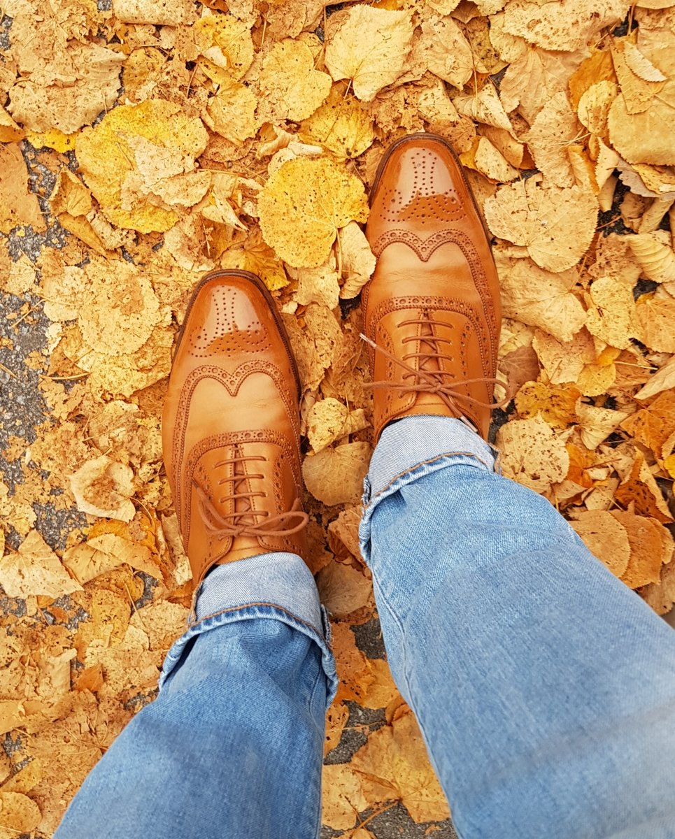 clifford-autumn.