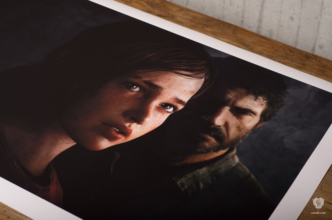 ellie-joel_last-of-us_naughty-dog_cook-and-becker_print1600-1.jpg