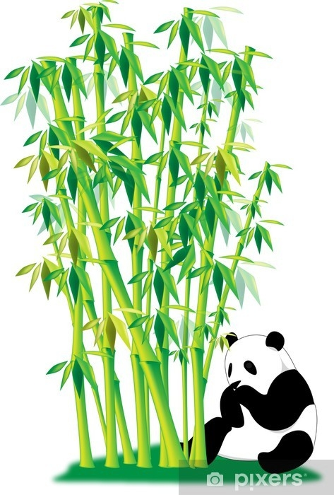fototapeter-panda-bambu-enligt.jpg.jpg