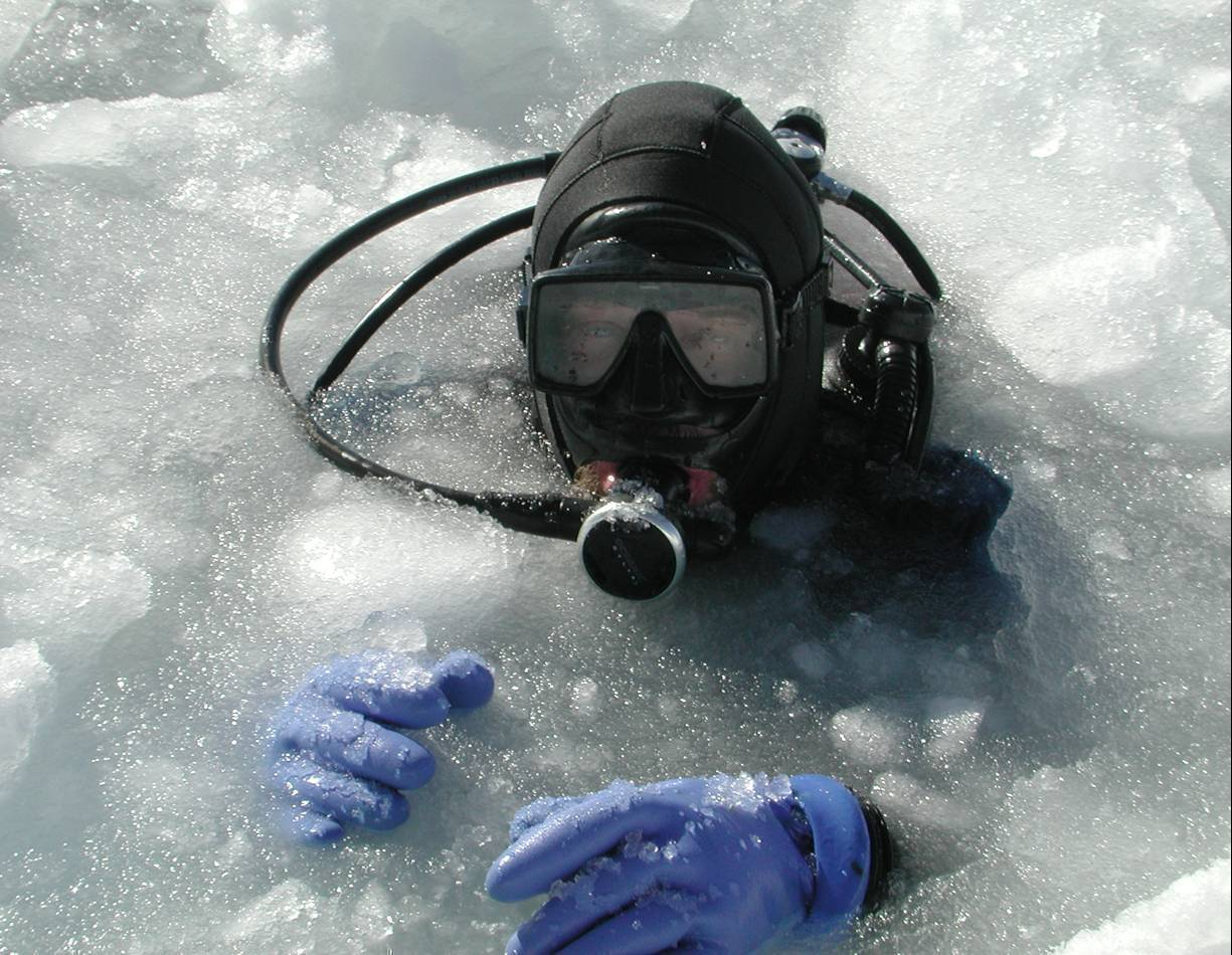 Greg Diving in Ice.jpg