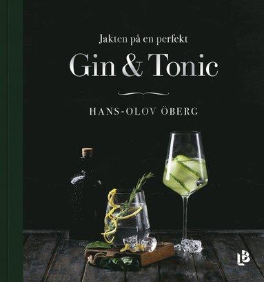 jakten-pa-en-perfekt-gin-tonic.