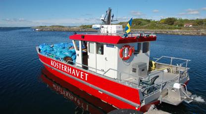 Kosterhavet%20med%20sopor-416.jpg