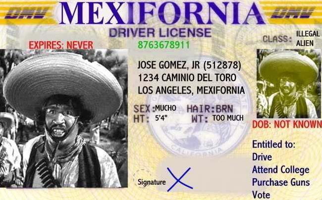 MexiforniaDriversLicense.jpg