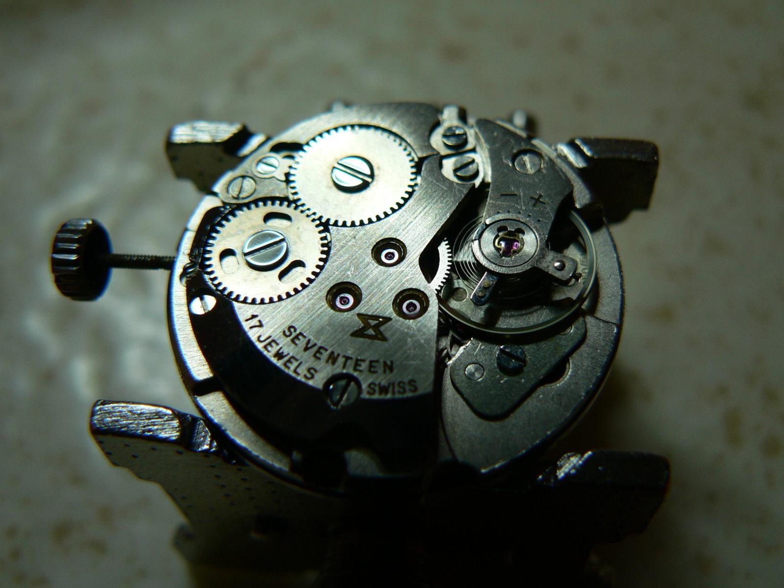 P1020722.JPG