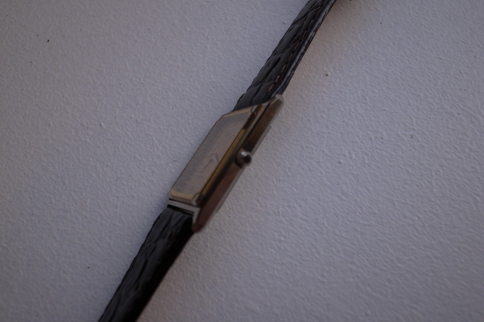 R1059664.JPG