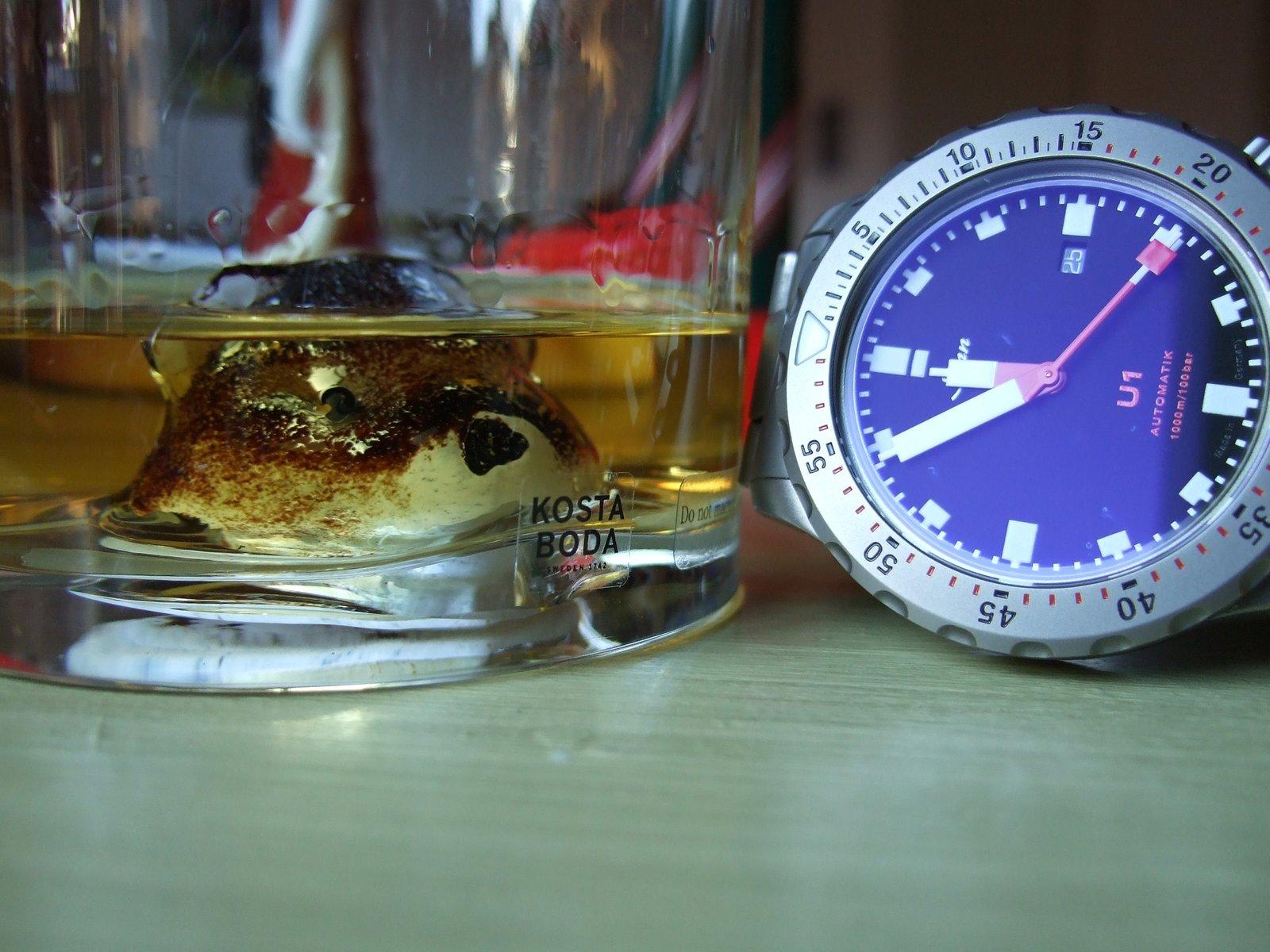 Sinn U1 Whiskybjörn 1900x.jpg