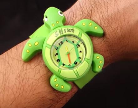 turtle1.