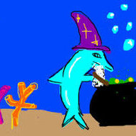 The Dolphinwizard